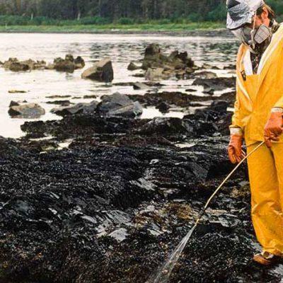 Oil Spill Bio Enzyme Powder